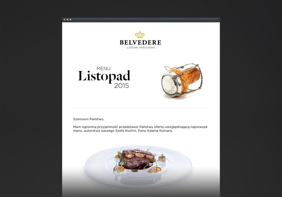 rebranding-belvedere-7